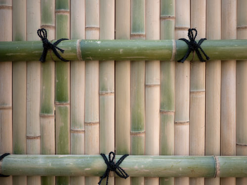bambooscreen-kyoto1.jpg