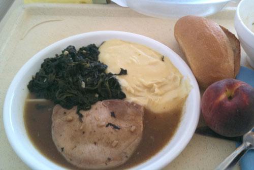 hospitalfood2-porkspinach.jpg