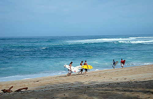 img: Surfers on Sunset Beach