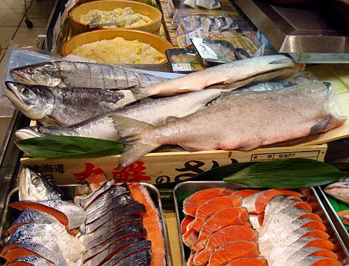 takashimaya12-fish1.jpg