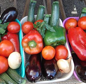 vegetableasst1.jpg