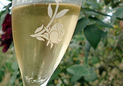 champagne-glass.jpg