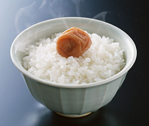 ricebowl_with_umeboshi.jpg